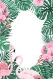 Dżungla opuszcza storczykowym kwiatu flaminga ptakom ramę Fotografia Stock