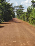 Dżungli droga Obrazy Royalty Free