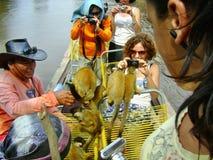 Dżungli mała małpa na łodzi Zdjęcia Royalty Free