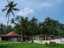 Dżungli plaża Obrazy Royalty Free