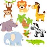 Dżungli zwierzęta Lew, słoń, żyrafa, małpa, papuga, krokodyl, zebra i nosorożec, ilustracja wektor