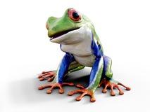 3D一只现实红眼睛的雨蛙的翻译 库存图片
