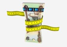 3D与剪刀的酋长管辖区 皇族释放例证