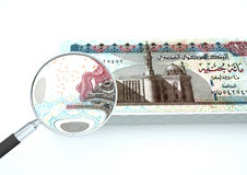 3D与放大器的被回报的埃及金钱调查在白色背景的货币 免版税库存图片
