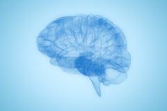 3d人脑的图象的综合图象 皇族释放例证