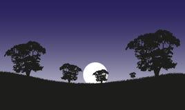 3 d例证月亮晚上 图库摄影