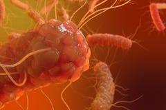 3D例证病毒细菌 导致慢性病,减少的免疫的病毒感染 下红色细菌 向量例证