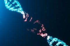 3D例证病毒脱氧核糖核酸分子,结构 概念被毁坏的代码人类基因组 损伤脱氧核糖核酸分子 ?? 皇族释放例证