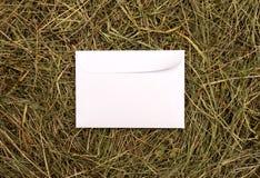 3d信包高图象质量回报了白色 库存照片