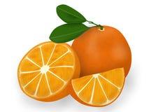 3d动画片反对在照片白色的桔子 库存图片