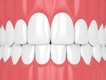 3d回报与牙的下颌 向量例证