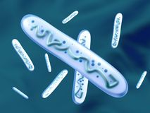 3D回报了乳酸杆菌属细菌的例证 免版税图库摄影