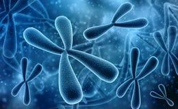 3D回报了染色体的例证 遗传学概念 库存例证
