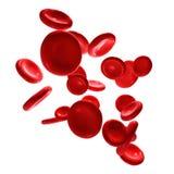 3d回报红血球背景 向量例证