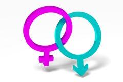 3D图表,性别问题,男性,女性,桃红色, bl 库存照片