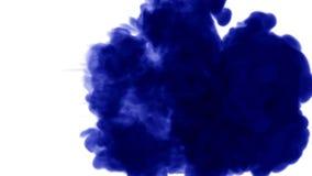 3d在白色背景的水中回报蓝墨水射入溶化并且传播与luma铜铍作为阿尔法通道为 股票视频