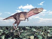 3d在路径翻译影子tarbosaurus白色的剪报恐龙 图库摄影