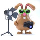 3d巧克力复活节兔子在演播室 库存例证