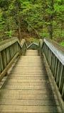 3d概念例证木台阶的成功 免版税库存图片