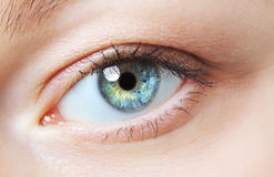 20d照相机eos眼睛人力宏观射击 图库摄影