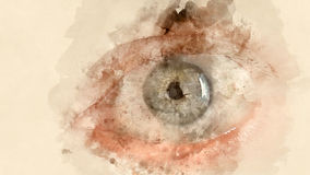 20d照相机eos眼睛人力宏观射击 库存例证