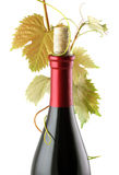3d瓶高例证图象红色解决方法酒 免版税图库摄影