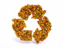 3d秋天recyclation标志 免版税库存图片
