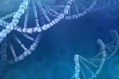 3D脱氧核糖核酸分子的例证 多孔的结构的调查 向量例证