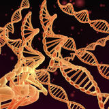 3d脱氧核糖核酸genered图象子线 免版税库存照片