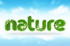 3D自然草 免版税库存图片