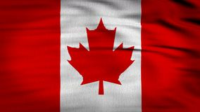 3d被回报的加拿大旗子 皇族释放例证