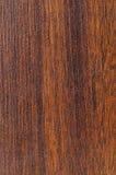 d'étage de bois dur échantillon de finition pré photos stock