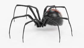 3D übertragen von der schwarze Witwen-Spinne Lizenzfreies Stockbild
