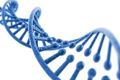3d übertragen von DNA-Struktur Stockfotografie