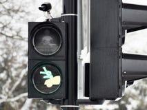 3d übertragene Abbildung getrennt auf Weiß Lizenzfreies Stockbild