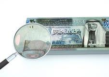 3D übertragenes Jordanien-Geld mit dem Vergrößerungsglas forschen Währung lokalisiert auf weißem Hintergrund nach lizenzfreie abbildung