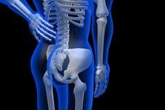 3d übertrug Illustration - Rückenschmerzen Lizenzfreies Stockbild