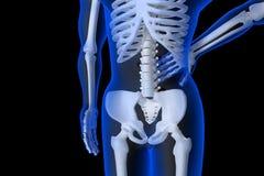 3d übertrug Illustration - Rückenschmerzen Lizenzfreie Stockbilder