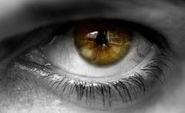 20d ανθρώπινη μακρο βλάστηση ματιών φωτογραφικών μηχανών eos στοκ εικόνες με δικαίωμα ελεύθερης χρήσης