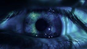 20d ανθρώπινη μακρο βλάστηση ματιών φωτογραφικών μηχανών eos απόθεμα βίντεο