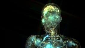 3D анимация человеческой анатомии иллюстрация вектора
