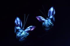3d бабочка v3 Стоковое Фото