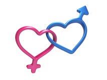 3d красочные сердца, символы рода соединенные совместно Стоковые Фотографии RF