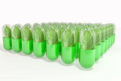3d перевод, зеленая капсула с лист в нем иллюстрация вектора