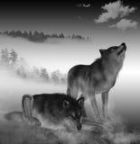 3D представляют тимберса Wolfs Стоковое фото RF