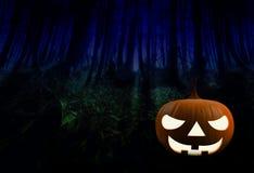 3D представляют тыквы хеллоуина Стоковые Фото