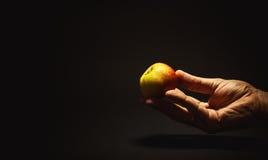 2 5d 70 рука яблока 200 8l держа метку мужчины ii сняли принятую студию Стоковые Фотографии RF