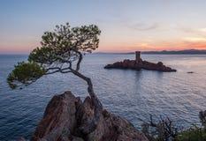 DÂ'Or Франции Provenece Illes среднеземноморское стоковые фото