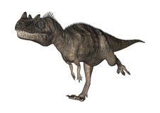 3D翻译在白色的恐龙角鼻龙 免版税库存照片