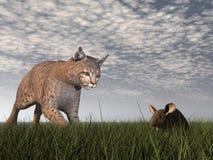 美洲野猫狩猎老鼠- 3D回报 免版税库存照片